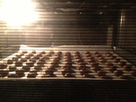 kruidnootjes in oven